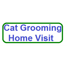 Cat Grooming Service Home Visit